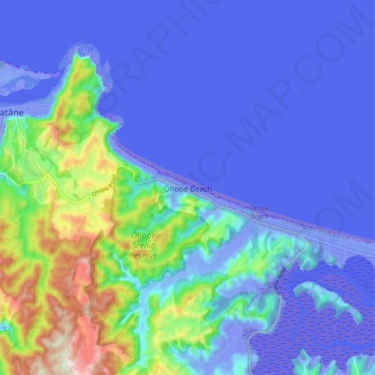 Ohope Beach topographic map, elevation, relief